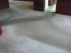 Grauer Teppichboden -Vorher